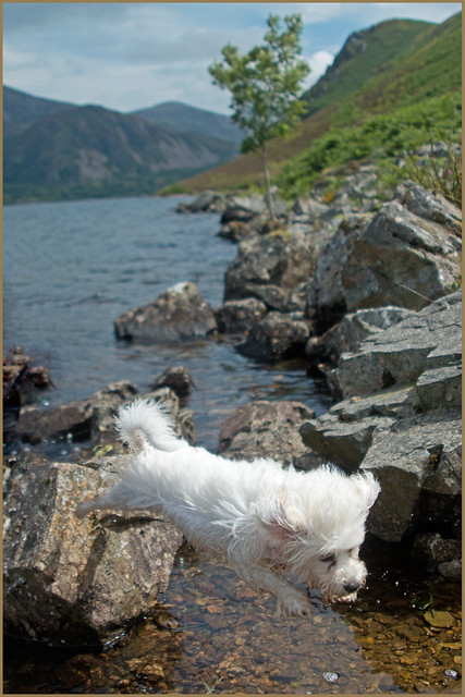 A Leap In the Lakes