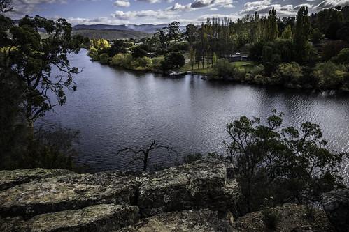 tasmania newnorfolk krismccracken