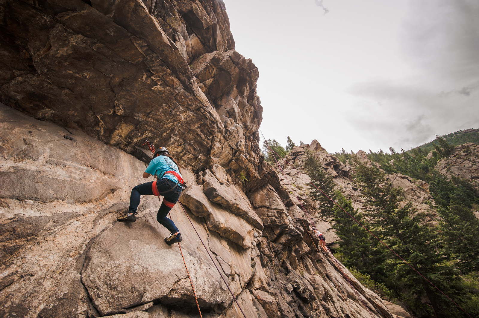 Rock Climbing Can Pose Threat to Cliff-Dwelling Birds, but May also Offer Opportunity