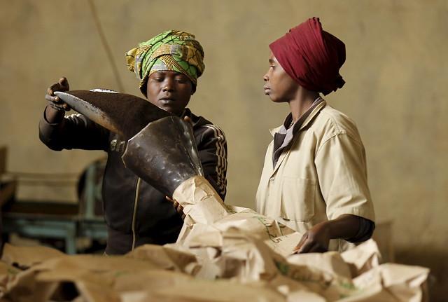 burundi bukeye reldbmgf10000093331