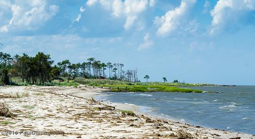 pauldiming summer beach landscape virginia diggs aaronsbeach diggsvirginia chesapeakebay d7000 dailyphoto matthewscounty matthewscountyvirginia unitedstates us