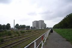 overgrown traintracks