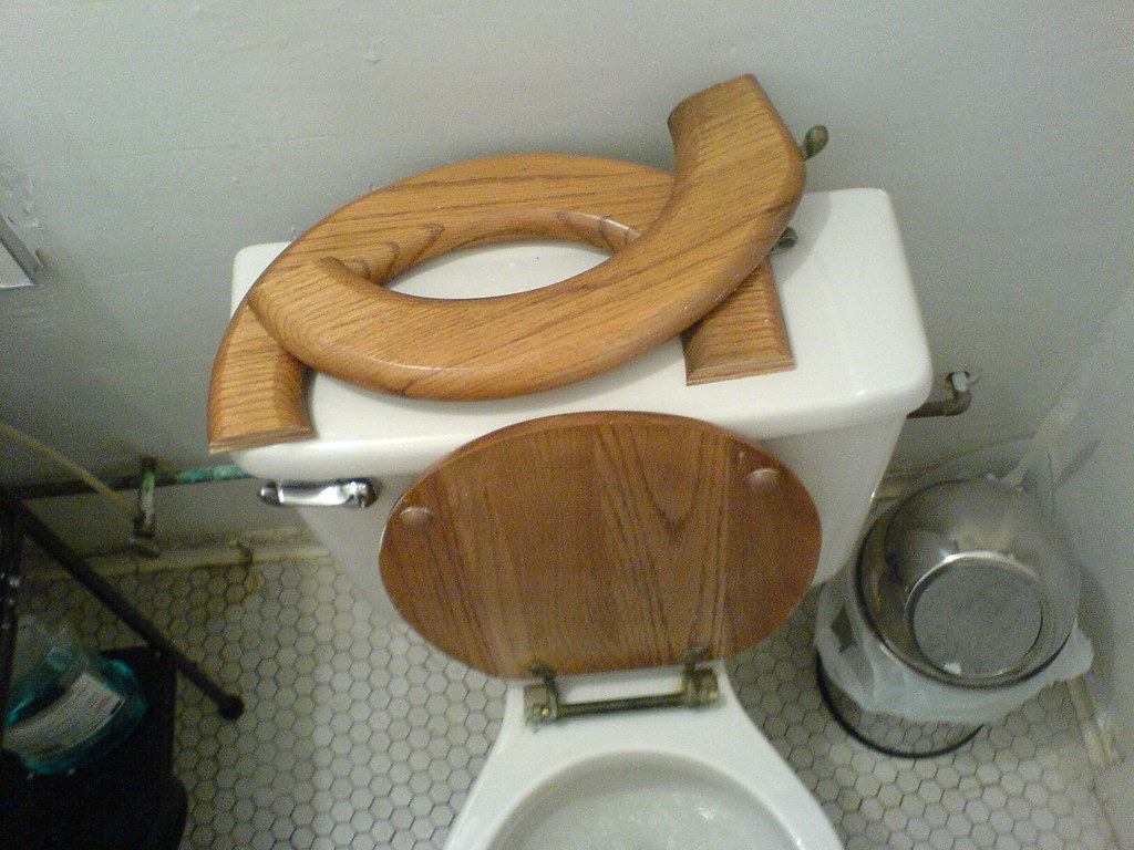Someone Broke My Toilet When I Came In To Take A Piss