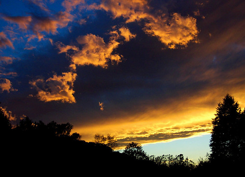 blue light sunset shadow sky color tree clouds dark landscape gold golden evening cool twilight sundown yeah sillouette