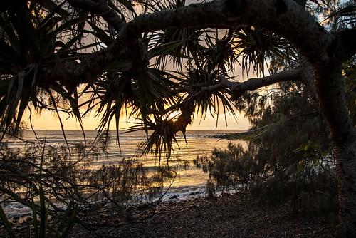 sunrise beach rocks tropical