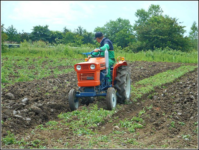 Ploughing  Session...