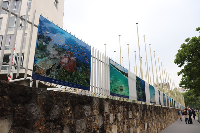 "Opening of the exhibition ""Coral reefs, a challenge for Humanity"", 5 June 2018"