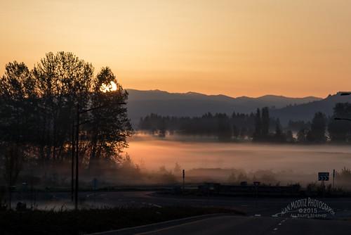 fog sunrise washington unitedstates sunup daybreak ridgefield