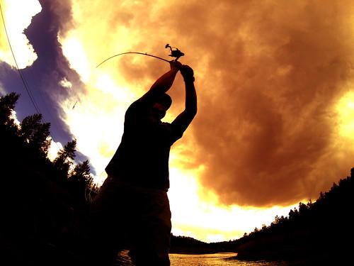Broncos Fishing Silhouette | by halseike