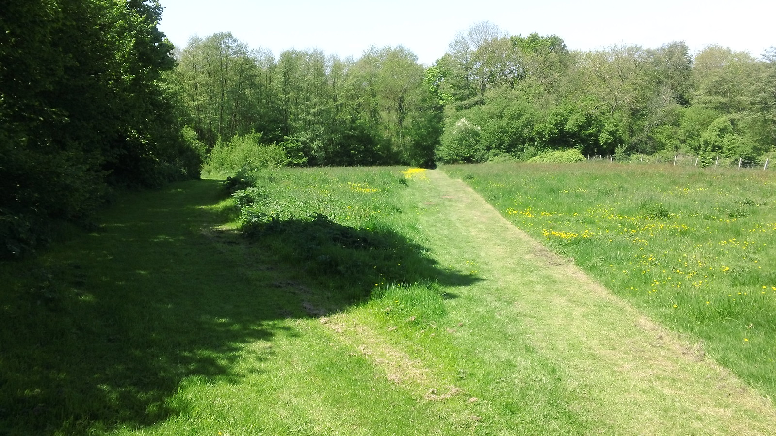 Choice of paths along Greensand Way, Kent