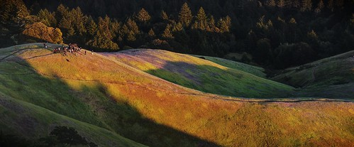 sunset mountain golden lightsandshadows raw hills photowalk sanrafael hdr rollinghills goldenhour millvalley mttamalpais thomashawk 3xp photomatix fav200 sel55210