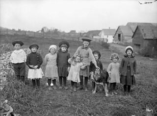Children in turnip field, Peabody Bros. farm, Woodstock, New Brunswick, 1912 / Des enfants dans un champ de navets à la ferme Peabody Bros. de Woodstock (Nouveau Brunswick), en 1912