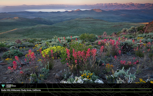 April #conservationlands15 Social Media Takeover Download: Desktop Wallpaper 16.9 (Widescreen) Resolution | by mypubliclands