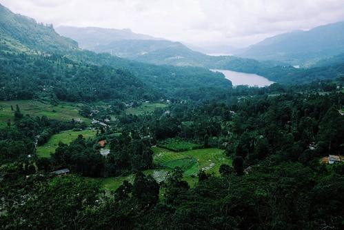 mountains nature landscape view tea fujifilm srilanka ceylon nuwaraeliya kotmale x100s