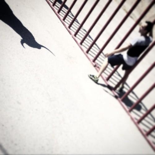 Bull shadow #fiestasdepueblo #barajasdemelo #torosdepueblo | by maglezdoval