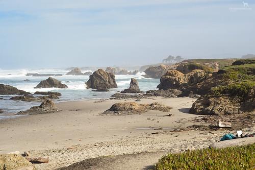 california fortbragg pacificocean coast beach reading rocks