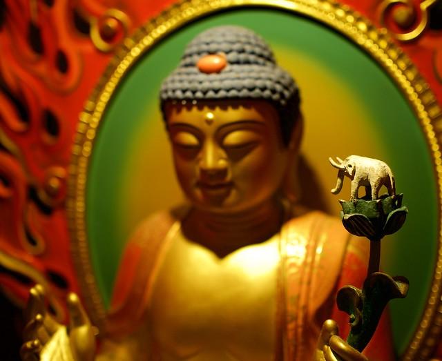 Buddha's Elephant