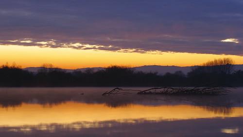 lake portugal nature water sunrise canon geotagged natureza aveiro g11 requeixo pateira fermentelos canonpowershotg11