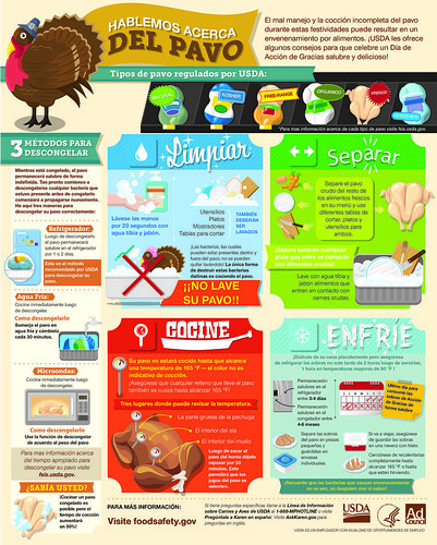 Thanksgiving Food Safety - Spanish | by USDA Food Safety