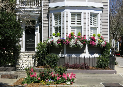 A springtime bay window on Broad Street, Charleston, SC | by Spencer Means