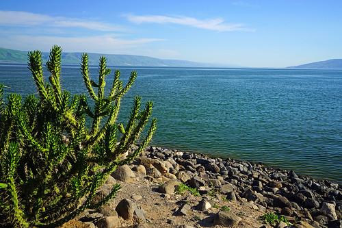 capernaum israel seaofgalilee
