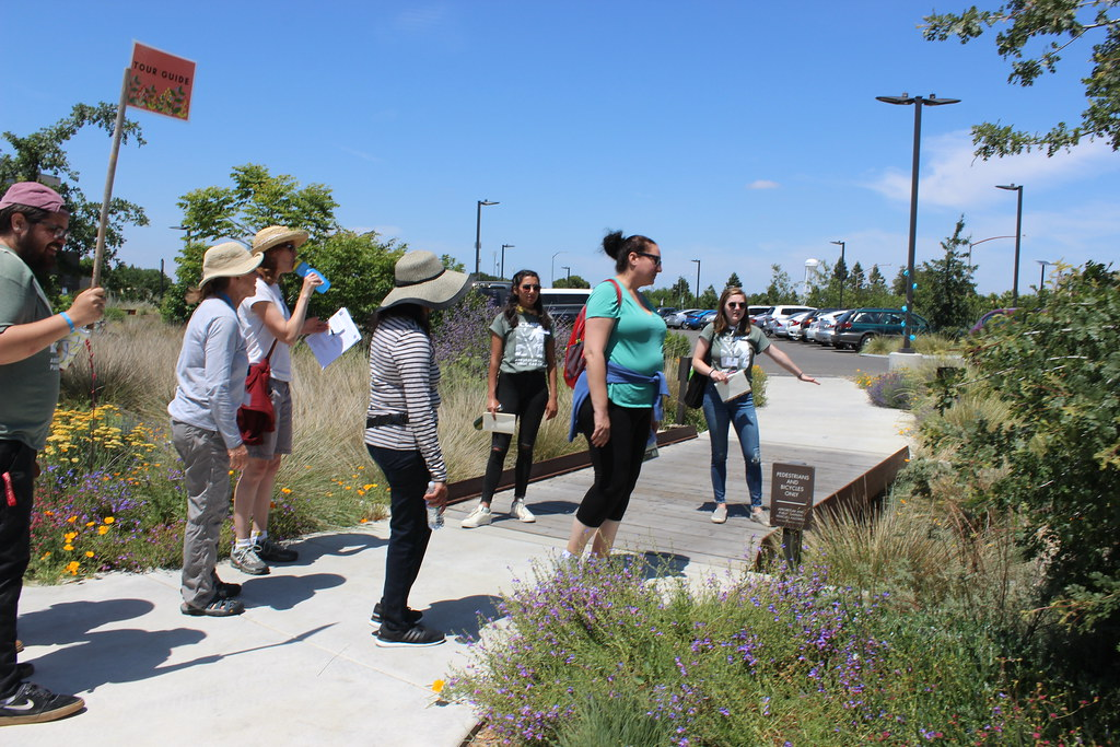 Pollinator Discovery Day Tour