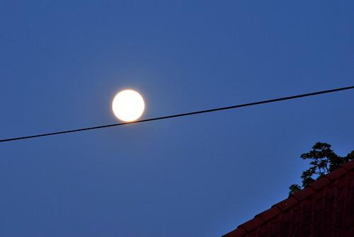 Grapevinefruit Moon balancing act