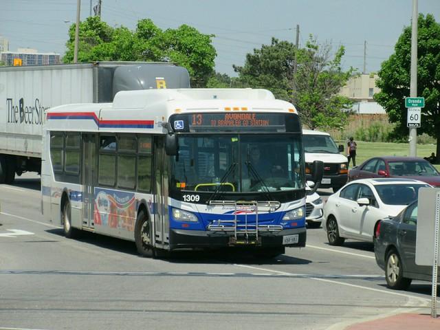 Brampton Transit 1309