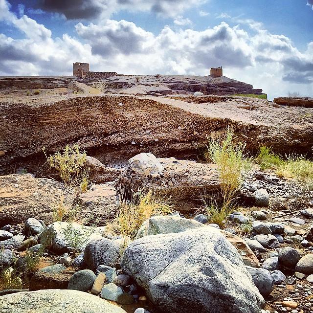 لوحة من وادي الخوض، #مسقط #سلطنة_عمان wadi alkhod, Muscat