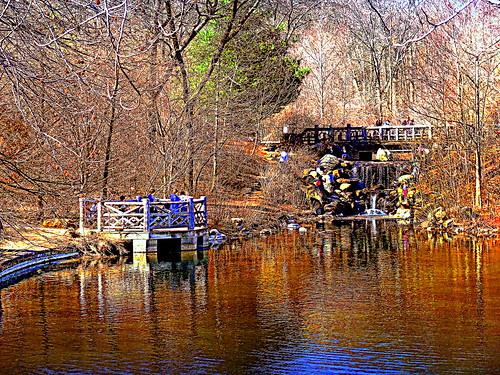 newyork brooklyn image prospectpark dmitriyfomenko spring42015