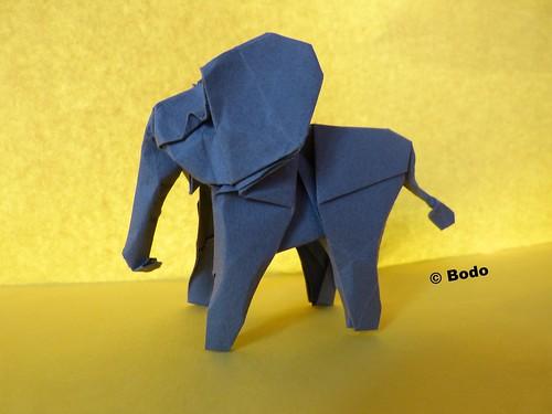 Elephant | by bodorigami