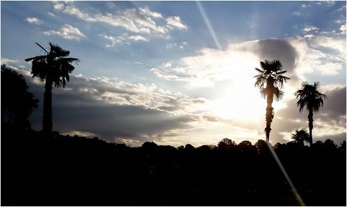 sunset pordosol sky cloud silhouette skyline perfil samsung nuvem ceu s4