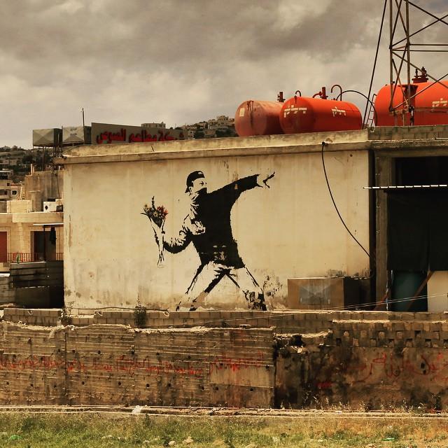 """Rage, Flower Thrower"" by Banksy in Bethlehem in the West Bank #israel #palestine #westbank #graffiti #urban #art #banksy"