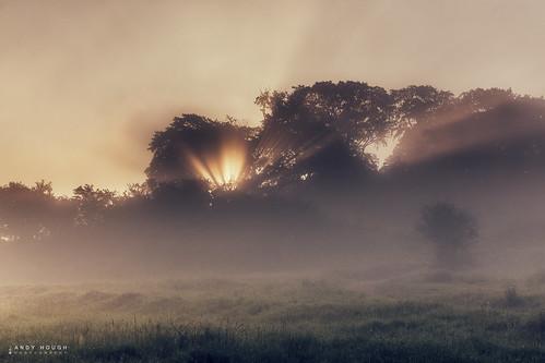 morning trees sky sunlight mist sunrise outdoor sony sunrays castlehill a77 wittenhamclumps sonyalpha andyhough slta77 andyhoughphotography
