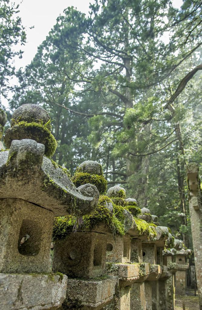 Mossy stone lanterns