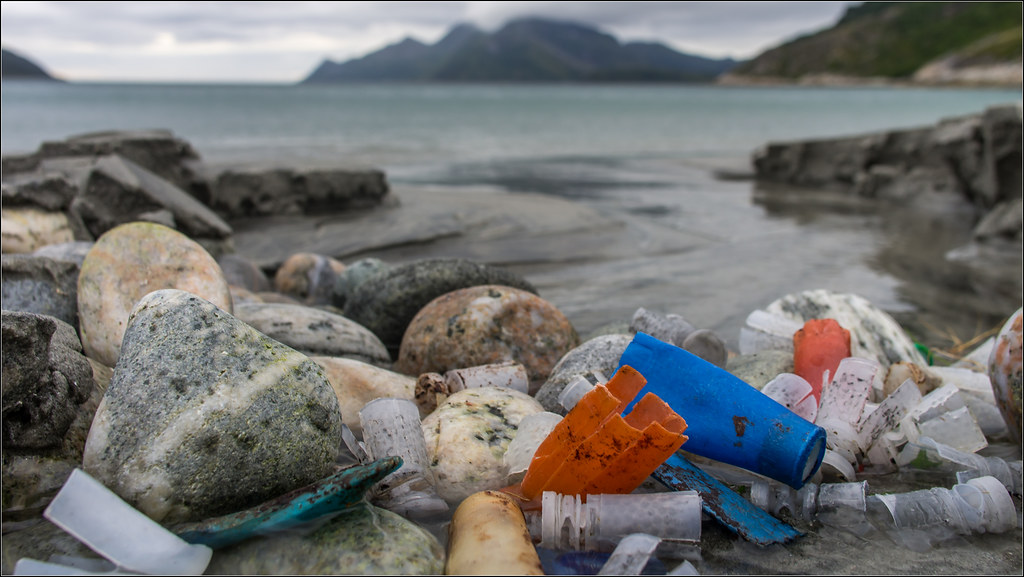 Marine litter. Shooting a shotgun leaves these in nature for maybe 400 years.