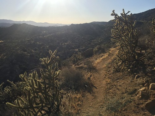 PCT: Day 11