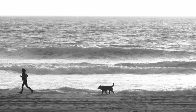 Girl running with her dog on Ocean Beach, San Francisco.  April 13, 2015