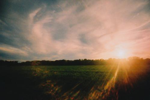 film analog 35mm ultrawideslim toycamera tungsten kodakektachrome320t crossprocessed xpro analogue vignette meadows magichour goldenhour sun sunset light lensflare westernmass filmgrain slidefilm dreamy