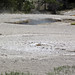 Little Squirt Geyser (Geyser Hill Group, Upper Geyser Basin, Yellowstone Hotspot Volcano, nw Wyoming, USA)
