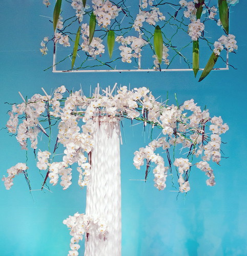 Orchid Installation - Design by KennethSnauwaert-HR | by Flower Factor