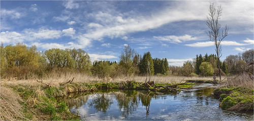 deutschland germany bayern bavaria paar landscape forest creek river trees sky clouds spring colors water canoneos