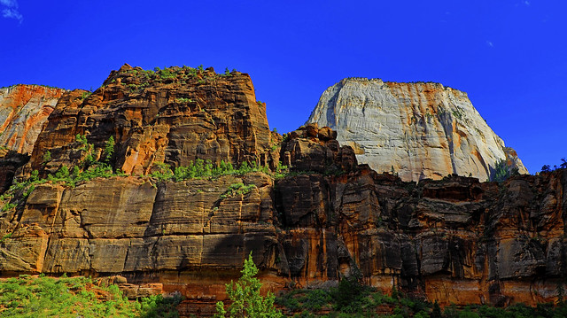 The Great White Throne : Zion National Park
