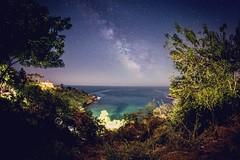 Paraísos en la tierra: Playa Carrizalillo, Oaxaca.