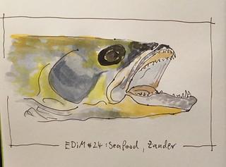 EDiM #24 : seafood, zander