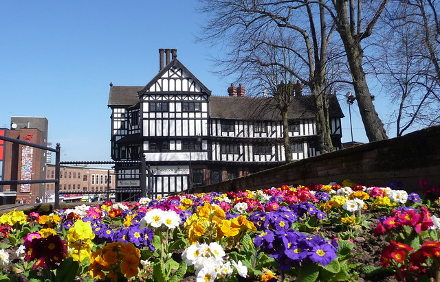 Spring Flowers_Broadgate_Coventry_Apr15