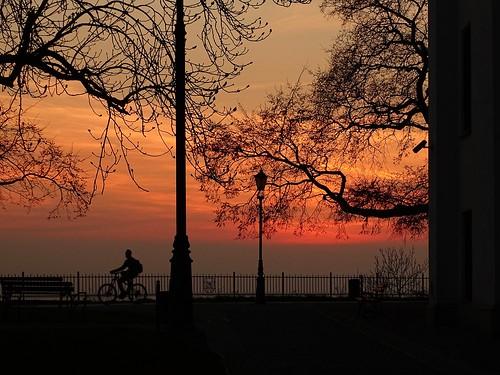trees sunset nature spring colours view silhouettes poland polska biker płock