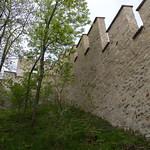 Petrinin muuri