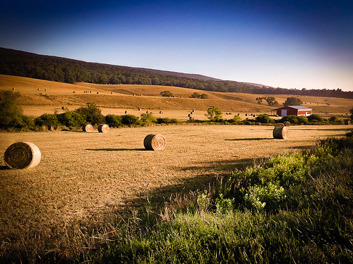 morning westvirginia hay haybales wv summer lgg3 county hardy