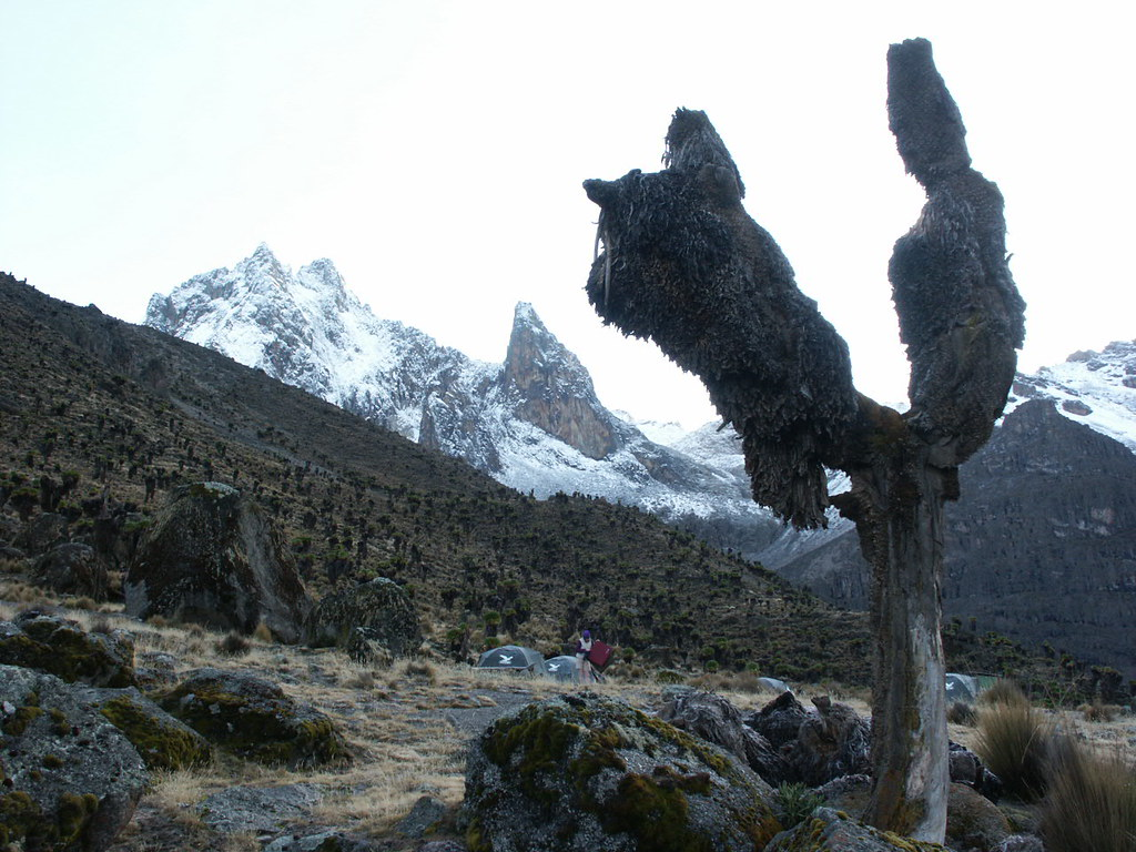 The summit of Mt Kenya from the tents at Mackinder's Camp.
